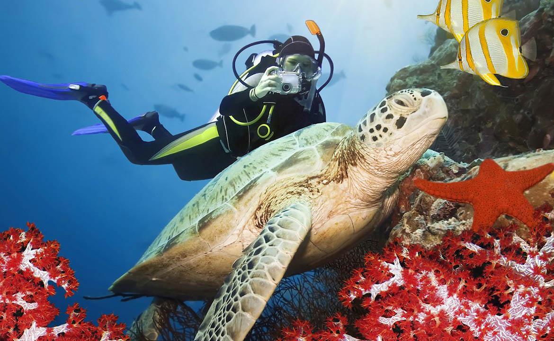 Насколько глубоко человек может погружаться под воду
