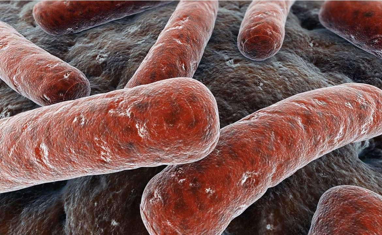 насколько опасен туберкулез