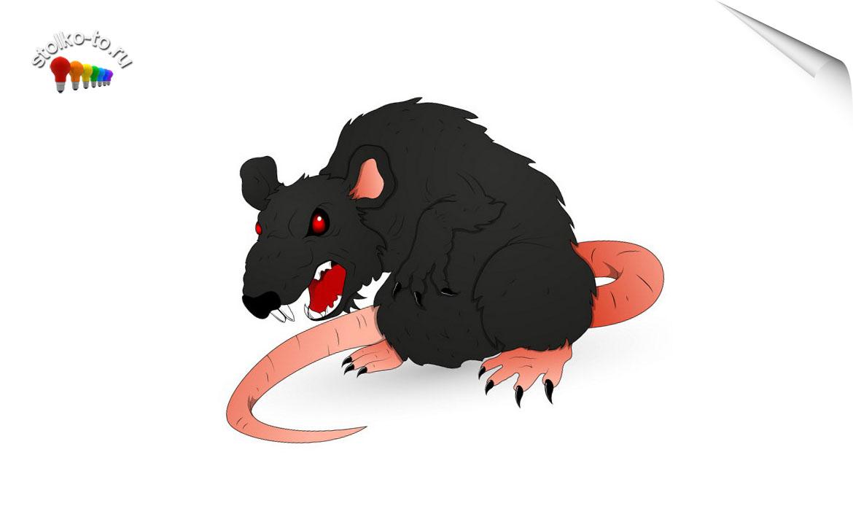 Насколько опасен крысиный яд